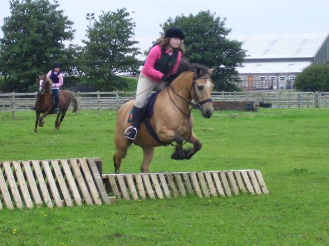 Matchless Adult horse lesson riding consider, that